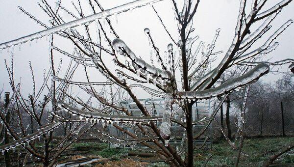 Ледяной дождь. Архивное фото