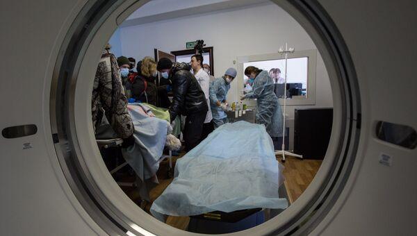 Найденному в Приамурье травмированному тигру делают томографию во Владивостоке