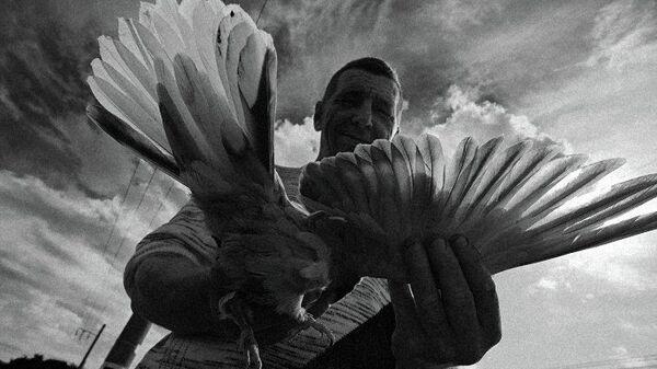 Фото Михаила Петрова из серии Самарские голубятни