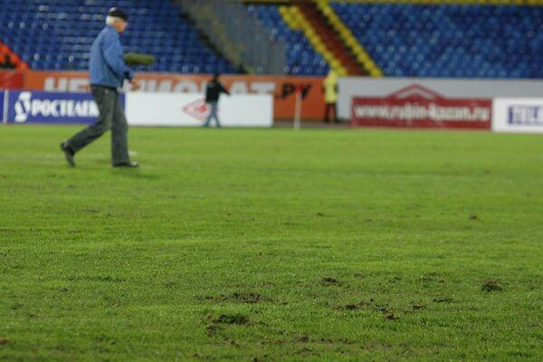 Газон стадиона Центральный в Казани