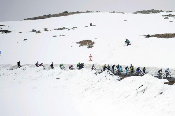 Велогонщики на Гранд-туре Джиро д'Италия